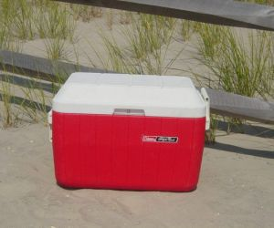 Extra Standard Cooler with Ice